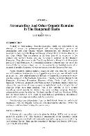 Stromatolites and other organic remains in the Bangemall Basin: Bulletin 128, Appendix A
