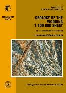 Geology of the Wodgina 1:100 000 sheet